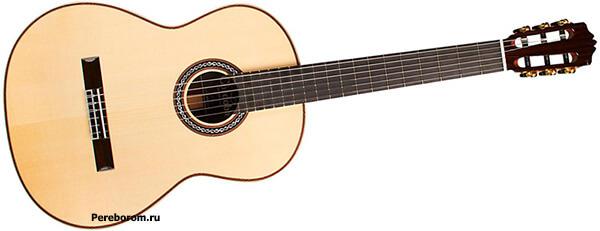 виды акустических гитар