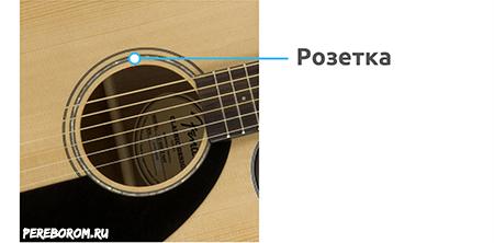строение классической гитары