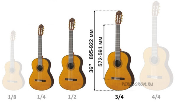 гитара 1 2 размер