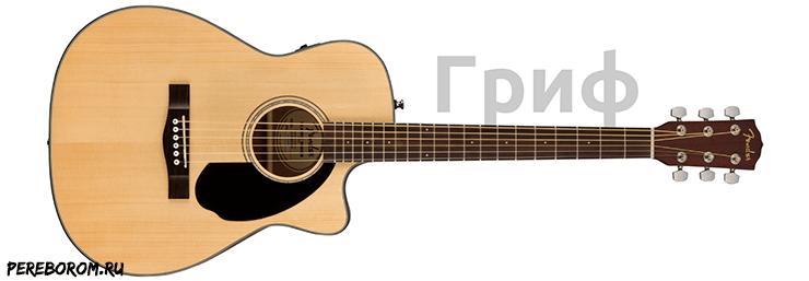 строение акустической гитары