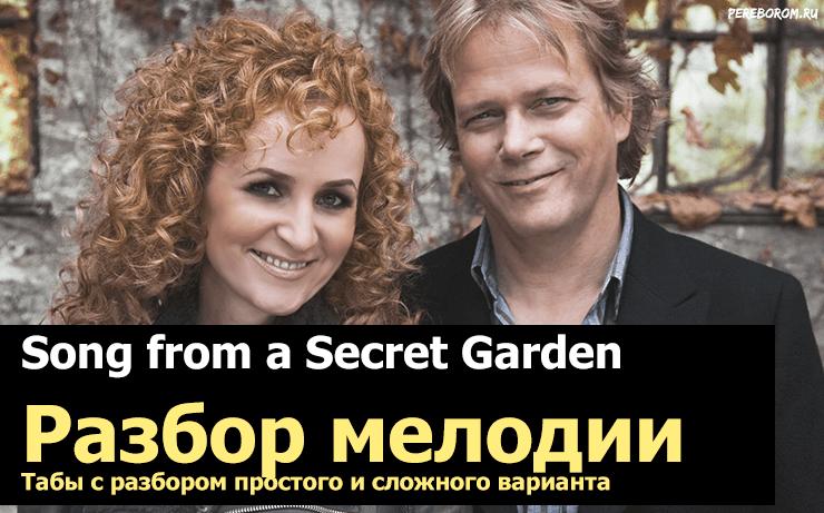 secret garden на гитаре